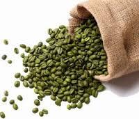 Green Coffee λειτουργία, συστατικα, πωσ εφαρμοζετα