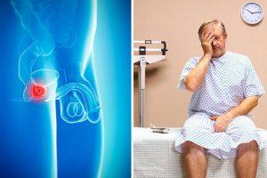 Reprostal for prostate, συστατικά - λειτουργία