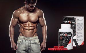 Testolan 60 capsule, δοσολογια, συστατικά - λειτουργία